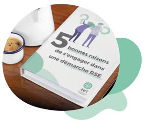 Livre blanc - 5 bonnes raisons de s'engager dans une démarche RSE